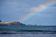the rainbow ends at Curio Bay!