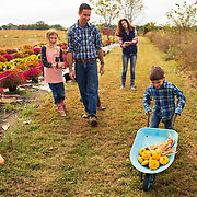 Grayson Ryder pushes produce with his wheelbarrow at the family's farm in Golconda, Illinois. The Ryder family moved from Arizona to start a small farm and live a rural lifestyle. Nathan Lambrecht/Journal Communications