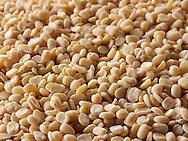 Whole Urid Dahl Beans - stock photos