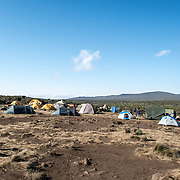 Tents laid out at Shira 1 camp on Mt Kilimanjaro.