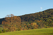 Washingtonville, New York  - The moon rises over Woodcock Mountain on Oct. 15, 2013.