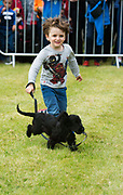 17/08/2017 Eddie Novis from Dublin with Otis  at the Connemara Pony Show in Clifden. Photo:Andrew Downes, xposure