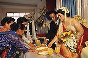 Bride and groom recieve guests during Christian wedding ceremony in Medan..Batak Indigenous Christian people living on Samosir Island and nearby Lake Toba in Indonesia. There are some 6 million Christian Batak in Indonesia, the world's largest Muslim country of 237 million people, which has more Muslims than any other in the world. Though it has a long history of religious tolerance, a small extremist fringe of Muslims have been more vocal and violent towards Christians in recent years. ..Batak religion is found among the Batak societies around Lake Toba in north Sumatra. It is ethnically diverse, syncretic, liable to change, and linked with village organisations and the monotheistic Indonesian culture. Toba Batak houses are boat-shaped with intricately carved gables and upsweeping roof ridges, and Karo Batak houses rise up in tiers. Both are built on piles and are derived from an ancient Dong-Son model. The gable ends of traditional houses, Rumah Bolon or Jabu, are richly decorated with the cosmic serpent Naga Padoha carved in wood or in mosaic, lizards, double spirals, female breasts, and the head of the singa, a monster with protruding eyes that is part human, part water buffalo, and part crocodile or lizard. The layout of the village symbolises the Batak cosmos. They cultivate irrigated rice and vegetables. Irrigated rice cultivation can support a large population, and the Toba and the Karo live in densely clustered villages, which are limited to around ten homes to save farming land. The kinship system is based on marriage alliances linking lineages of patrilineal clans called marga. In the 1820's Islam came to the southern Angkola and Mandailing homelands, and in the 1850's and 1860's Christianity arrived in the Angkola and Toba region with Dutch missionaries and the German Rheinische Mission Gesellschaft. The first German missionary caused the Dutch to stop Batak communal sacrificial rituals and music, which was a major blow to the traditional religion. Dutch