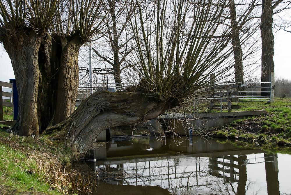 Zeist, 23 maart, 2010.Waterschap de stichtse rijnlanden. Voorjaar landelijk gebied. . (c)Renee Teunis.