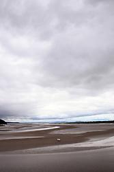 Tidal sand banks of Taf estuary, Laugharne, Carmarthenshire, South Wales 2021