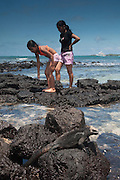 Marine Iguana (Amblyrhynchus cristatus) with tourists, Puerto Ayora, Santa Cruz Island, Galapagos Islands, Ecuador