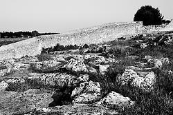 Reportage sul comune di Alessano per il progetto propugliaphoto..Panorama del'insediamento rupestre di Macurano..Macurano è un villaggio rupestre considerato un luogo di scambio e commercio, simbolo della cultura dell'olio per la presenza ad oggi di alcune tracce nelle grotte e di frantoi funzionanti nella zona. L'insediamento è caratterizzato da una serie di grotte sia naturali che scavate nel calcare, cisterne per la raccolta dell'acqua, sistemi di canalizzazione che scendono da Montesardo, viottoli, scalette e vie più larghe con antiche tracce di carri..Si ritiene che in questo sito, un vero e proprio centro abitato ben organizzato distante circa quattro km dalla costa, i monaci basiliani scappati dall'oriente in seguito alla lotta iconoclasta, trovarono rifugio e si dedicarono all'agricoltura..L'area del villaggio rupestre fu sicuramente sfruttata in epoche successive, lo prova l'esistenza di ben tre masserie di cui una fortificata e i resti di una serie di costruzioni che fanno parte dei numerosi esempi di architettura rurale presenti in questo territorio. .Il complesso masserizio, denominato Macurano, edificato probabilmente nel Cinquecento include la Masseria di Santa Lucia e la cappella di Santo Stefano. La Masseria è dominata dal nucleo originario, ovvero dalla torre cinquecentesca coronata da beccatelli a sostegno del parapetto aggettante del terrazzo sommitale.