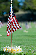 American flags and lei adorn all of the gravesites at Punchbowl National Cemetery in Honolulu, Hawaii