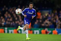 LONDON, ENGLAND - Wednesday, December 10, 2014: Chelsea's Loic Remy in action against Sporting Clube de Portugal during the final UEFA Champions League Group G match at Stamford Bridge. (Pic by David Rawcliffe/Propaganda)