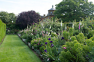 Digitalis, Iris and Rosa in a border in the walled garden at Houghton Hall, King's Lynn, Norfolk, UK