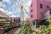 Melbourne Star Observation Wheel and Harbour Town Shopping Center
