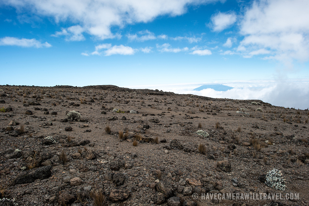 The rocky, rugged apline desert on Mt Kilimanjaro Lemosho Route. These shots were taken on the trail between Moir Hut Camp and Lava Tower at approximately 14,500 feet. In the distance, partly obscured from clouds, you can see the summit of Mt Meru.