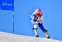 HONDO Ammi, LW6/8-2, JPN, Giant Slalom at the WPAS_2019 Alpine Skiing World Cup, La Molina, Spain