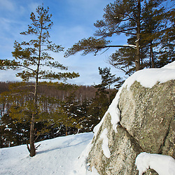 Winter on top of Pony Mountain at the Chapel Brook Reservation in Ashfield, Massachusetts. The Trustees of Reservations.
