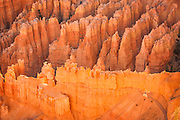 Seen from Bryce point, Bryces Amphitheatre, Bryce Canyon National Park, Utah, United States of America