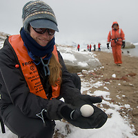 A researcher displays a Gentoo Penguin egg at Neko Harbor, Antarctica.