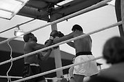 Ali vs Lewis Fight, Croke Park,Dublin.<br /> 1972.<br /> 19.07.1972.<br /> 07.19.1972.<br /> 19th July 1972.<br /> As part of his built up for a World Championship attempt against the current champion, 'Smokin' Joe Frazier,Muhammad Ali fought Al 'Blue' Lewis at Croke Park,Dublin,Ireland. Muhammad Ali won the fight with a TKO when the fight was stopped in the eleventh round.<br /> <br /> Both boxers are pictured trying to throw a punch.