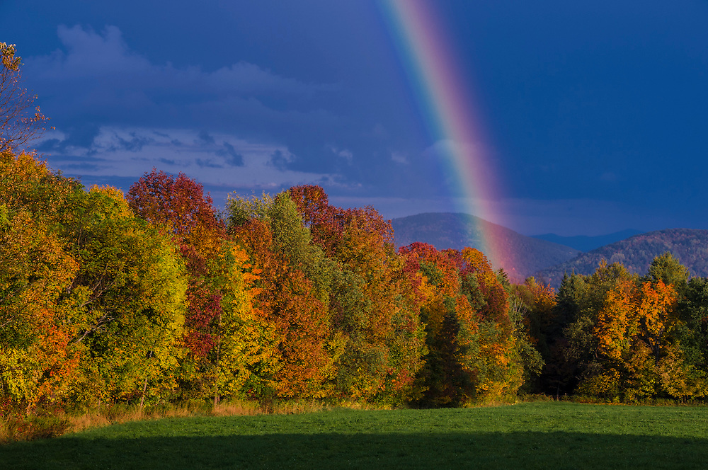 Rainbow and strong light on fall foliage treeline after clearing storm, Peacham, VT