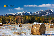 Hay bales and Big Mountain after an autumn snow near Whitefish, Montana, USA