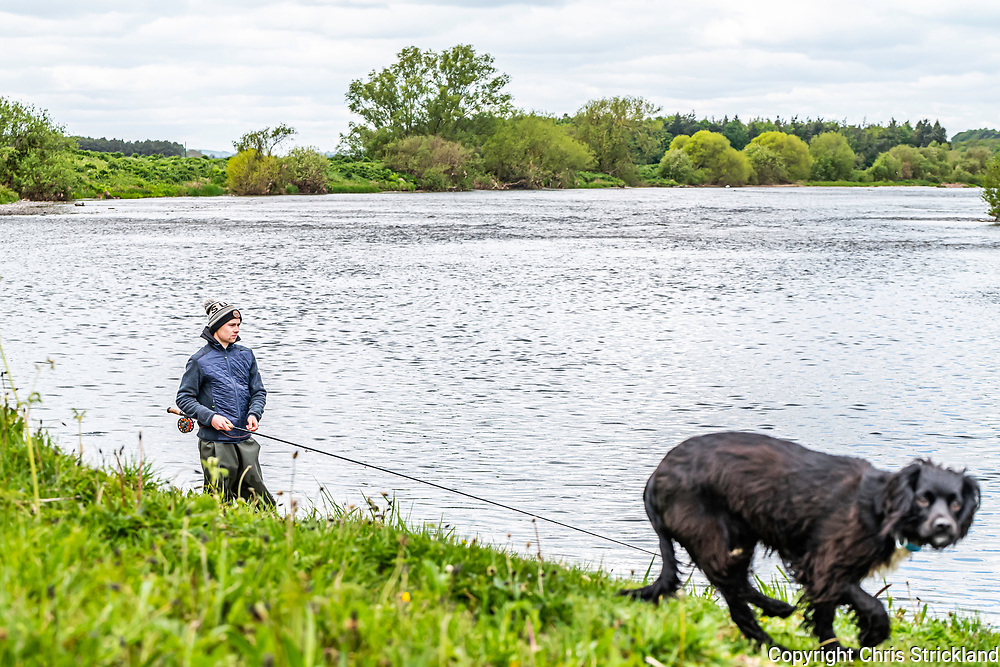 Cornhill on Tweed, Berwick, Northumberland, England, UK. 13th May 2020. Ghillie Dean Cockburn, who started his job at the start of the 2020 season, fishes for salmon on the West Learmouth beat on the English side of the River Tweed near Coldstream. Different rules applied to fisheries in England as opposed to those in Scotland for the first time since 1807 due to the different lockdown easing strategies.