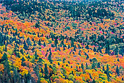 Autumn  colors in the Laurentian Mountains. Great Lakes - St.  Lawrence Forest Region.<br />La Mauricie National Park<br />Quebec<br />Canada