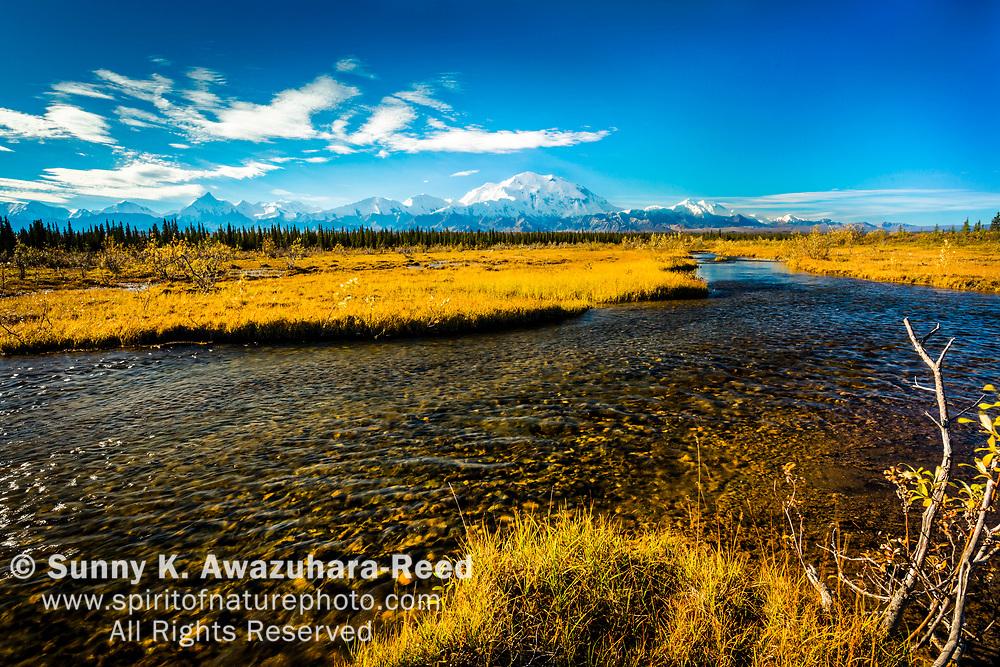 View of Mount Denali (McKinley) with creek. Denali National Park & Preserve, Alaska, Autumn.