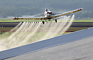 Goshen, New York - A crop duster pulls up after spraying herbicide over a black dirt onion fields on May 21, 2011. Herbicide is sprayed to kill the barley, which was planted with onions in the field to shield the onions from the wind.