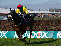 Grand National Meeting - Ladies' Day<br /> e.g. of caption:<br /> National Hunt Horse Racing - 2017 Randox Grand National Festival - Friday, Day Two [Ladies' Day]<br /> <br />    in the 4th race 15.25 JLT Melling Chase (Grade 1) (Class 1)<br /> 2m 3f 200y, Good 9 Runners at Aintree Racecourse.at Aintree Racecourse.<br /> <br /> COLORSPORT/WINSTON BYNORTH