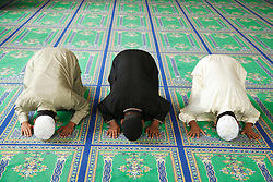 Muslim boys at prayer in a Mosque.