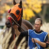 Thoroughbred Racing - Fort Erie 2010