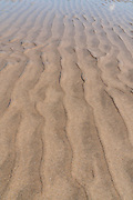Low Tide Sand Ripples