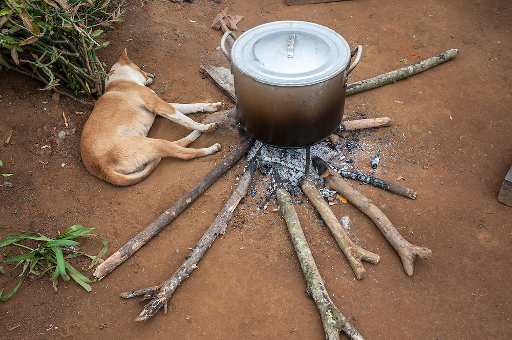 A dog warms itself by a cooking fire in a Laotian village