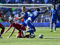 Football - 2018 / 2019 Premier League - Cardiff City v Liverpool<br /> <br /> Oumar Niasse of Cardiff City & Jordan Henderson of Liverpool collide , at Cardiff City Stadium.<br /> <br /> COLORSPORT/WINSTON BYNORTH