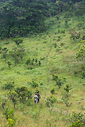 Wilderness Safari guide & local Pygmy guide<br /> (Stephanie Courtines & Norbert)<br /> Ngaga<br /> Republic of Congo (Congo - Brazzaville)<br /> AFRICA