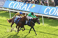 LOLAS THEME (9) ridden by David Probert and trained by Tom Dascombe winning The Coral Handicap Stakes over 1m (£35,000)   during the October Finale meeting at York Racecourse, York, United Kingdom on 13 October 2018. Pic Mick Atkins