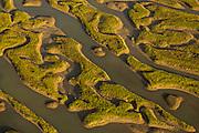 Aerial view of marsh islands Mount Pleasant, SC.