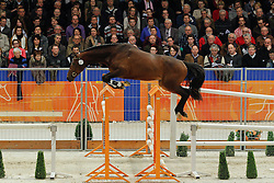 212 - Envoy<br /> KWPN Hengstenkeuring - 's Hertogenbosch 2012<br /> © Hippo Foto - Leanjo de Koster