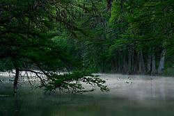 Stock photo of an early morning fog over the Frio River in the Texas Hill Country