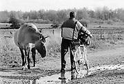 Nederland, Millingerwaard, 15-10-1998Een konikpaard ontmoet een recreant in het natuurgebied. wilde paarden.Gelderse Poort. RecreatieFoto: Flip Franssen/Hollandse Hoogte