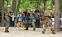 "The Navy Seal Team take their suspect with the help of K-9 Raven during their performance drill for the crowd at Wellington State Beach following the ""Swim With a Mission"" event on Friday afternoon.  (Karen Bobotas/for the Laconia Daily Sun)"