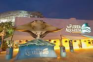 USA, Vereinigte Staaten Von Amerika: Florida Aquarium, erleuchtetes Aquarium in Abenstimmung, Tampa, Florida | USA, United States Of America: Florida Aquarium, illuminated aquarium in the evening, Tampa, Florida |