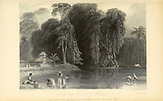 Scene Near The Coast Of Malabar [Malabar Coast is a region of the southwestern shoreline of the mainland Indian subcontinent] From the book ' The Oriental annual, or, Scenes in India ' by the Rev. Hobart Caunter Published by Edward Bull, London 1836 engravings from drawings by William Daniell
