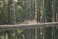 Young woman trail running along dam near Tahoe City, CA