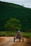 Alto Caparao_MG, Brasil...Homem andando de charrete em uma estrada de terra em Alto Caparao...A man in the chariot on the land road in Alto Caparao...Foto: BRUNO MAGALHAES / NITRO