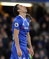 Football - 2016 / 2017 Premier League - Chelsea vs. AFC Bournemouth<br /> <br /> Pedro of Chelsea sticks out his tongue after scoring his 2nd goal at Stamford Bridge.<br /> <br /> COLORSPORT/ANDREW COWIE