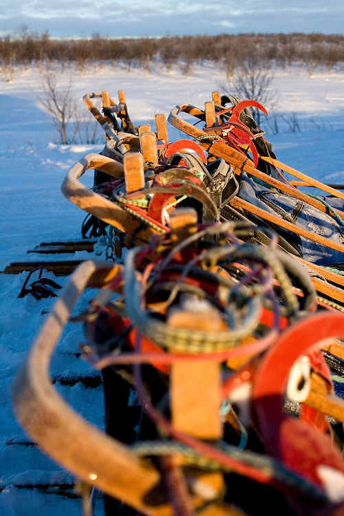 The expedition sledges. Each sledge contained our own personal gear and was pulled by our own team of 4 huskies
