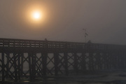 Thick fog blankets Isle of Palms beach at sunrise near Charleston, South Carolina.