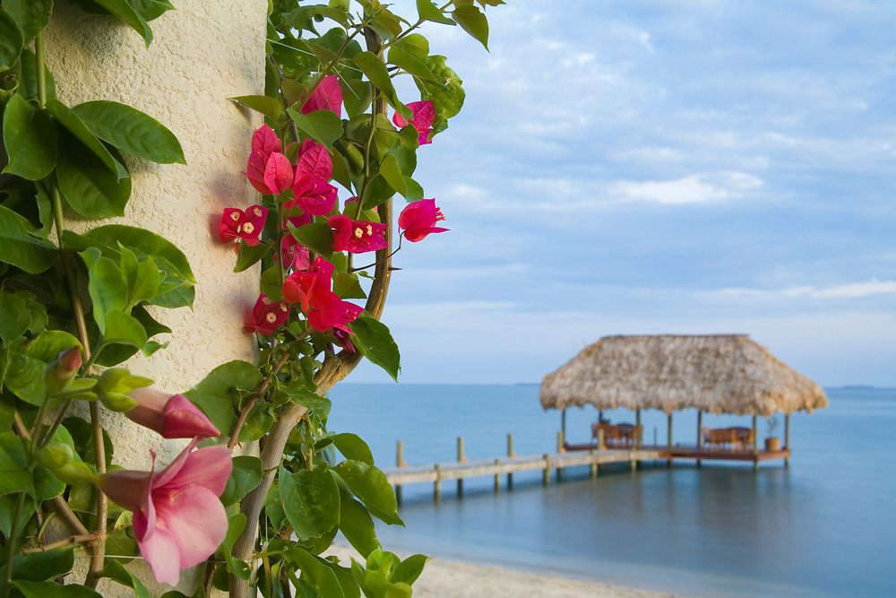 Bougainvilla vine on pillar, and pier with thatched palapa jutting into Caribbean Sea, Chabil Mar Villas, Placencia, Stann Creek District, Belize  PR