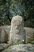 Anthropomorphic face carved in stone standing out from landscape, Filitosa, Sollacaro, Corsica, France