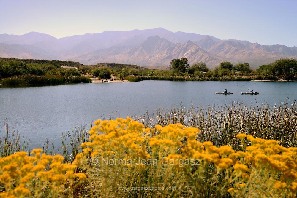 Kayakers traverse Roper Lake at Roper Lake State Park in Graham County, Safford, Arizona, USA.